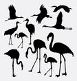 Flamingo in action silhouettes vector image