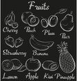 Vintage fruits Hand-drawn chalk blackboard sketch vector image