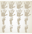 Collection hands and feet prints vector image