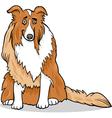 collie purebred dog cartoon vector image
