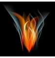 Burn flame fire abstract background vector image