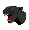 Puma head with bared teeth vector image