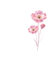 Pink watercolor flower vector image
