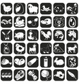 Icons farm animals and products vector image
