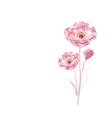 Pink watercolor flower vector image