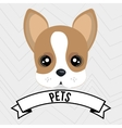 Dog pet mascot icon vector image
