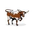 Texas Longhorn Bull Vector Image