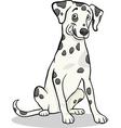 dalmatian purebred dog cartoon vector image