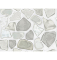 stone texture vector image vector image