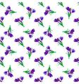 Seamless spring pattern Crocus vector image