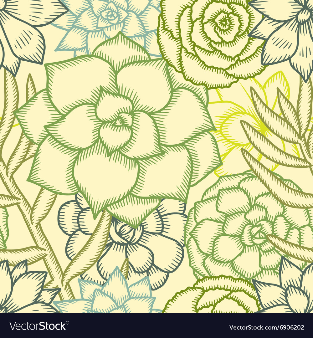 Hand drawn succulents seamless pattern vector