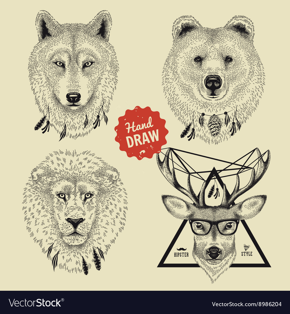 Sketch of wild animal heads bear wolf deer vector