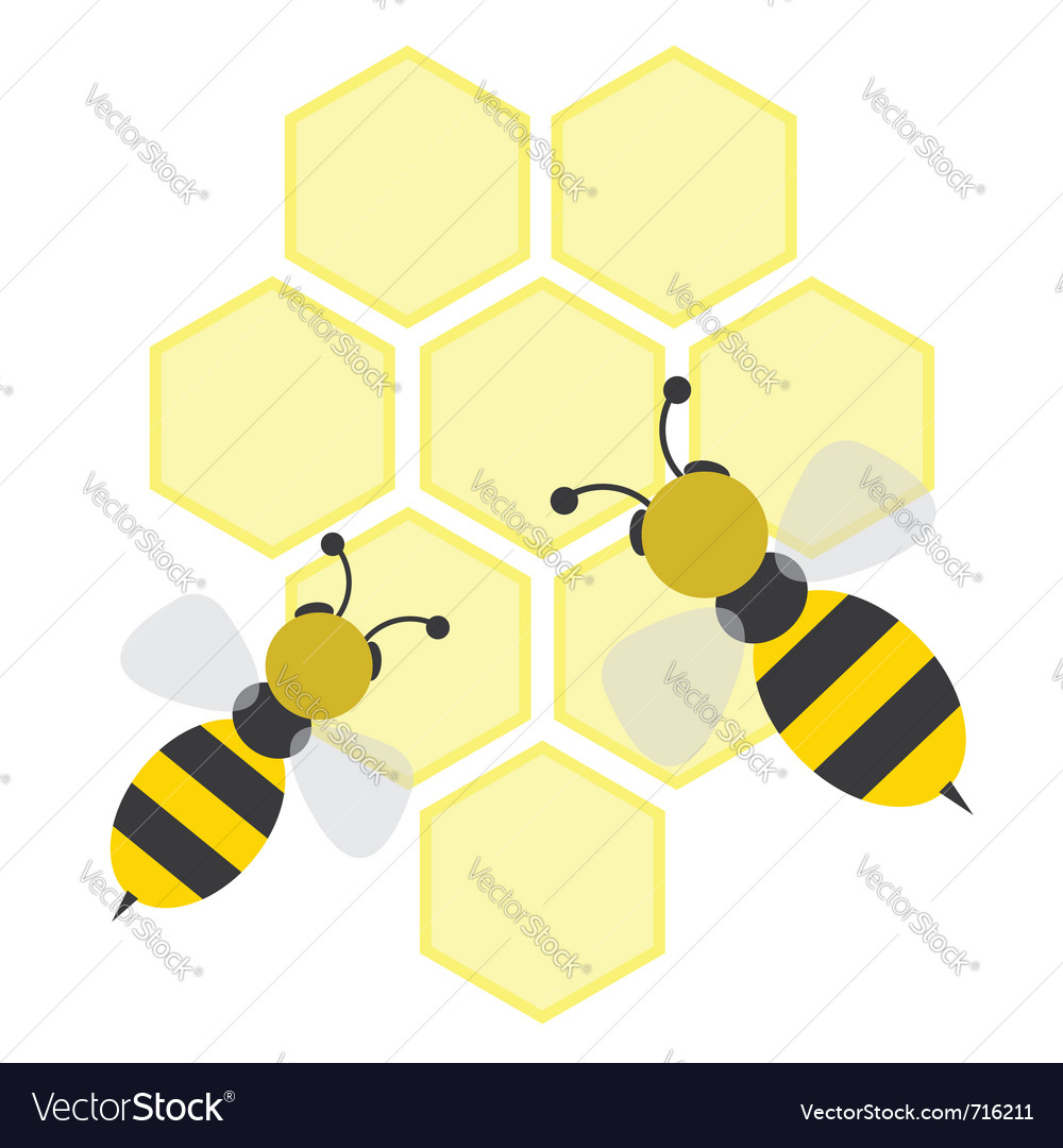 Cartoon bees on honeycells vector