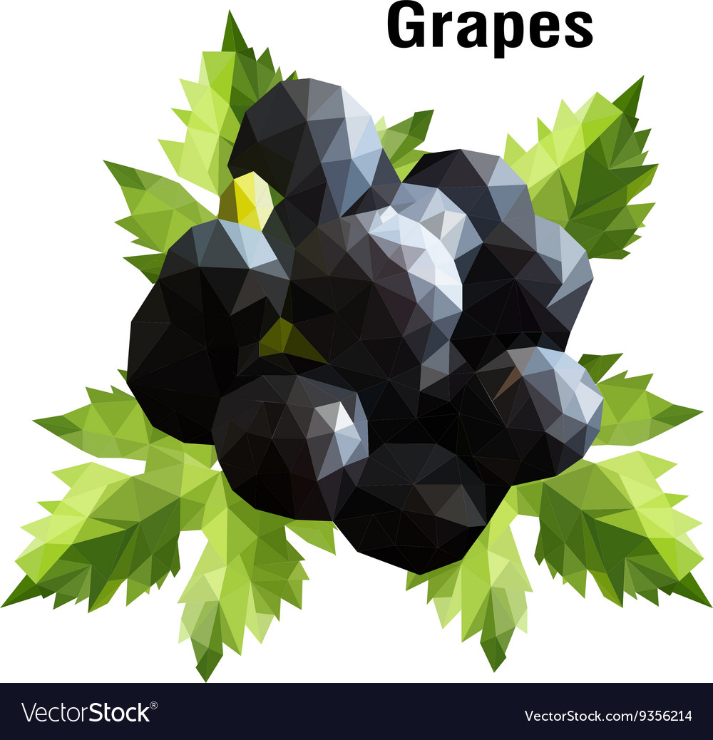 Grapes low poly vector