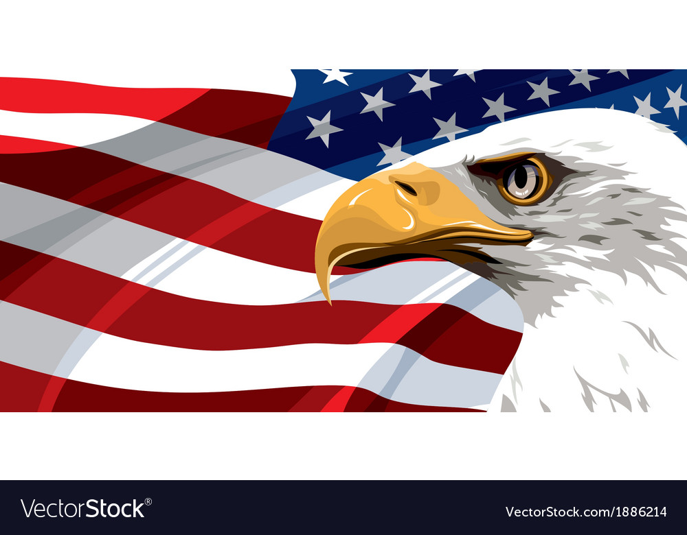 Usa flag eagle vector
