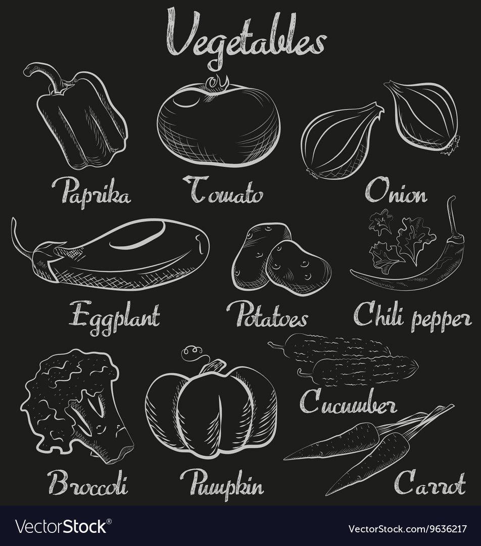 Vintage vegetables handdrawn chalk blackboard vector