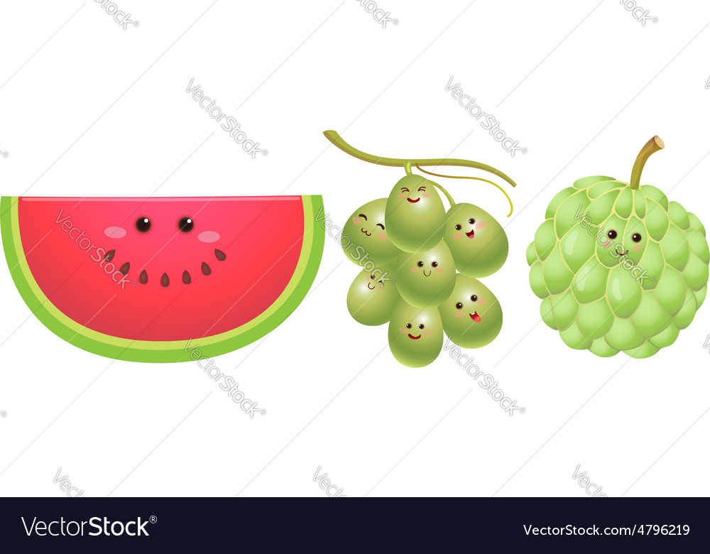 Cute fruits watermelon grape custard apple vector