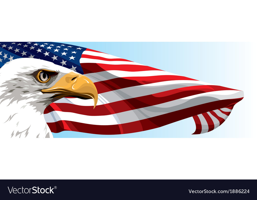 Usa eagle flag vector