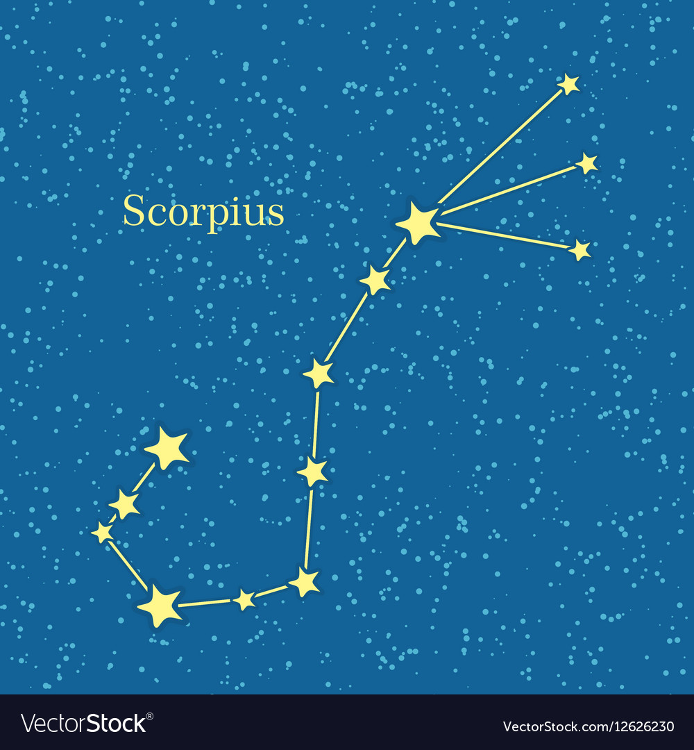 Night sky with scorpius constellation vector