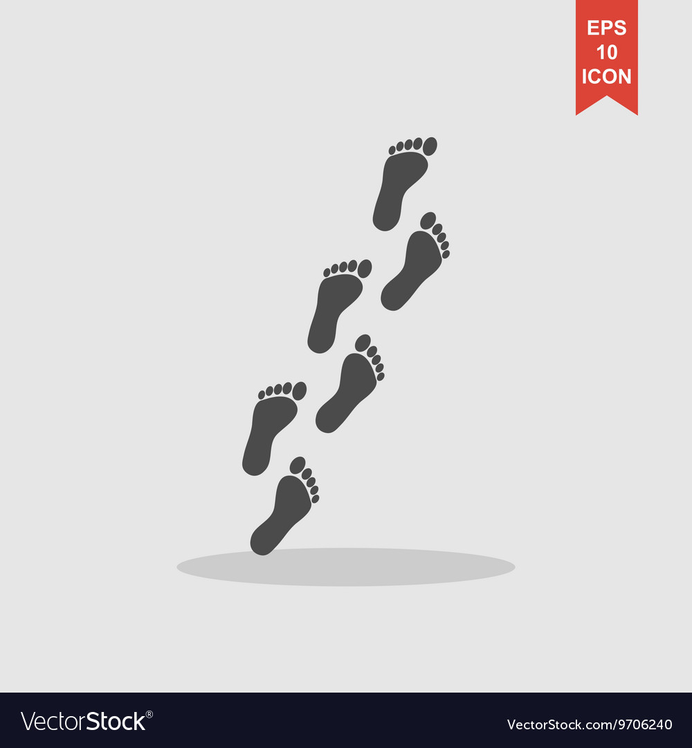 Feet prints flat vector