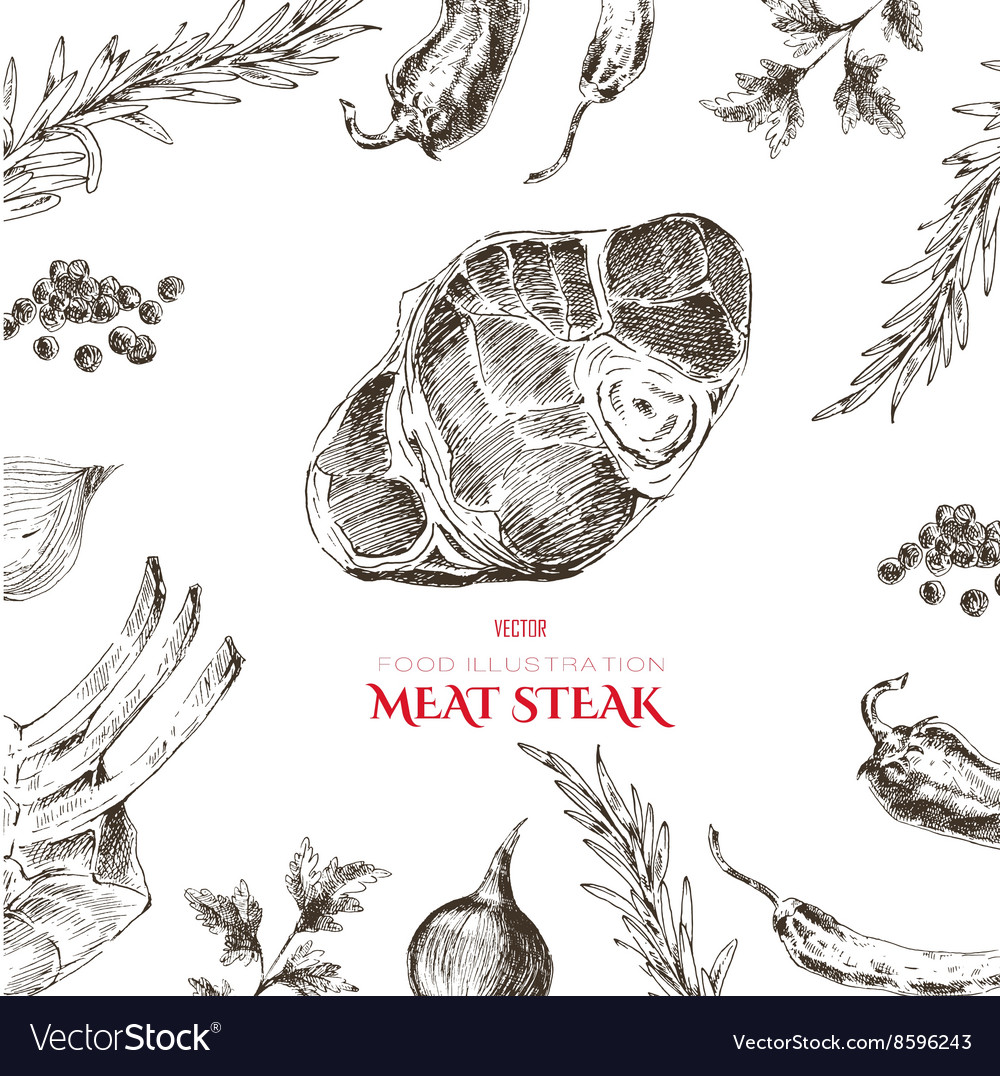Meat steak sketch drawing designer template vector