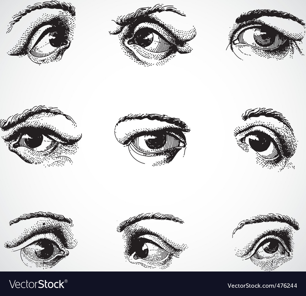 Live traced eyes vector