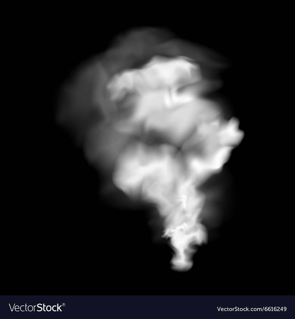 New smoke realistic sign vector