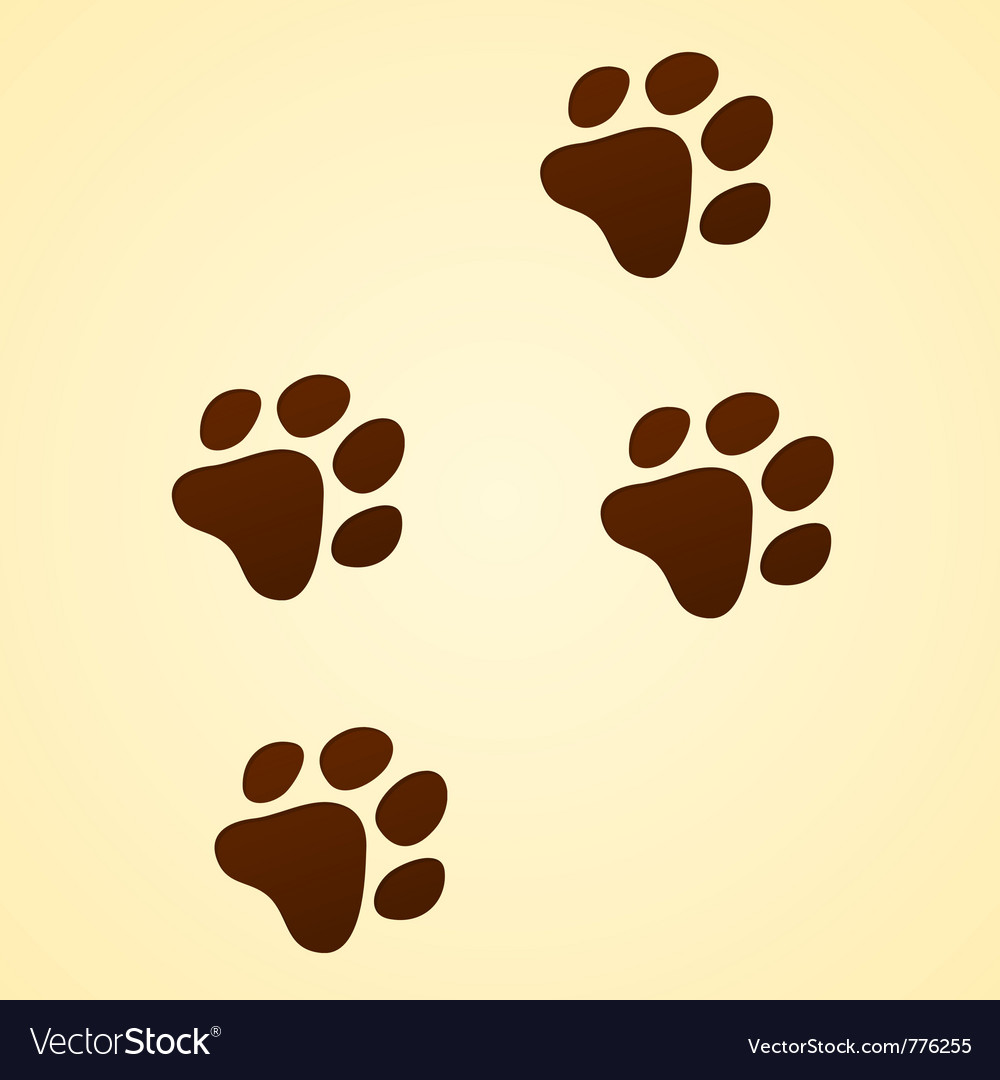 Wildlife cartoon trace vector