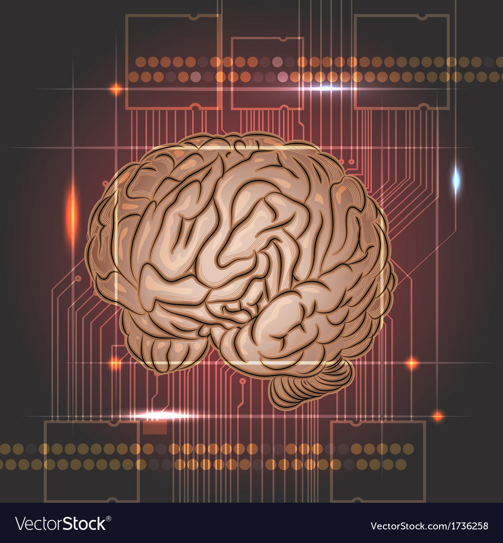 Brain board vector
