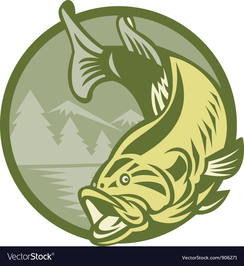 Largemouth bass fish vector