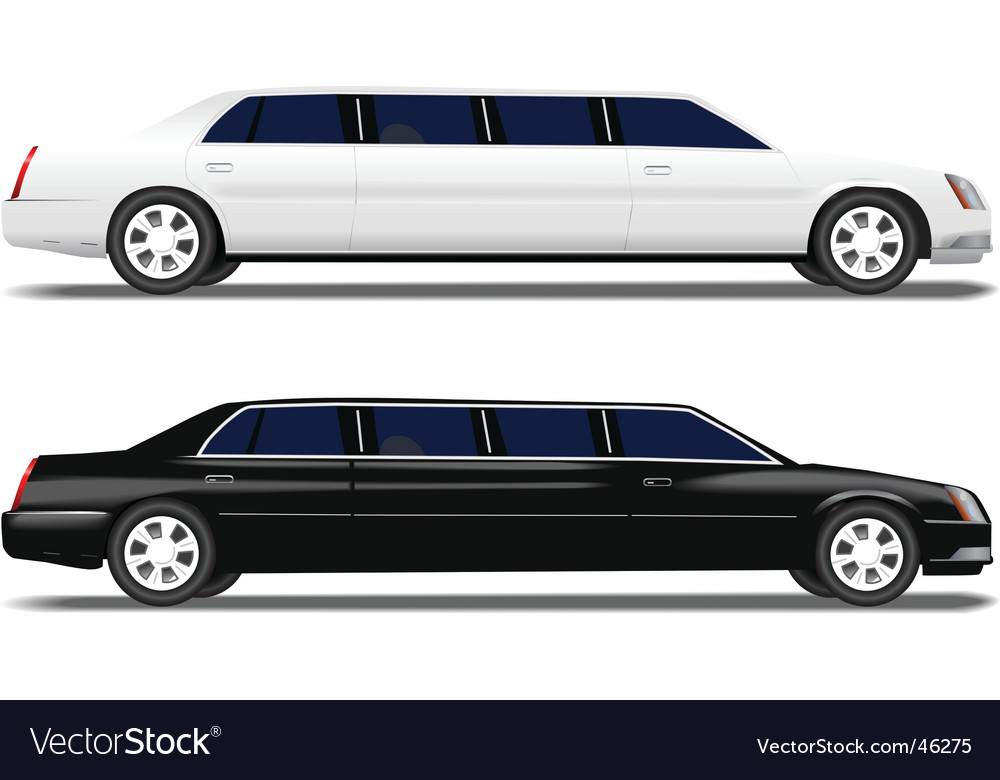 Black limo and white limousine vector