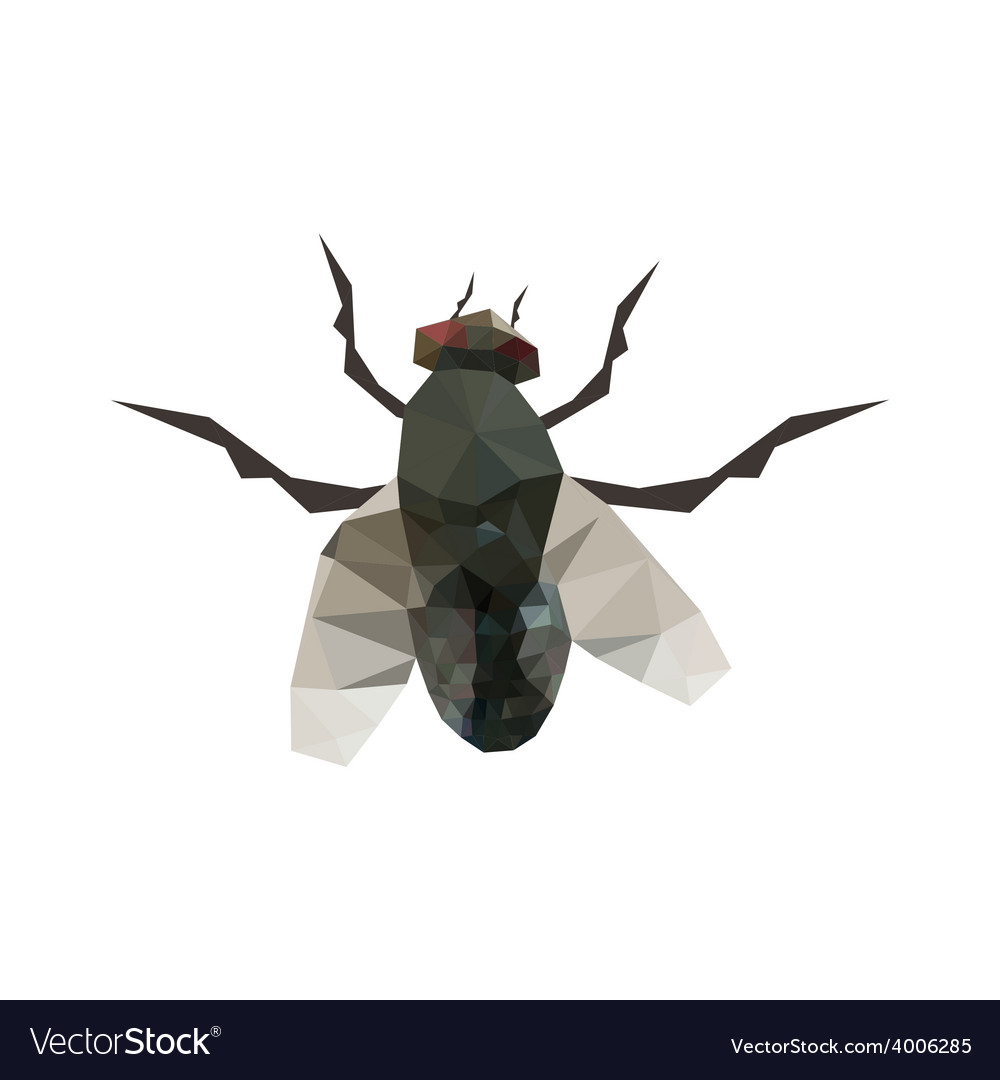 Origami fly vector