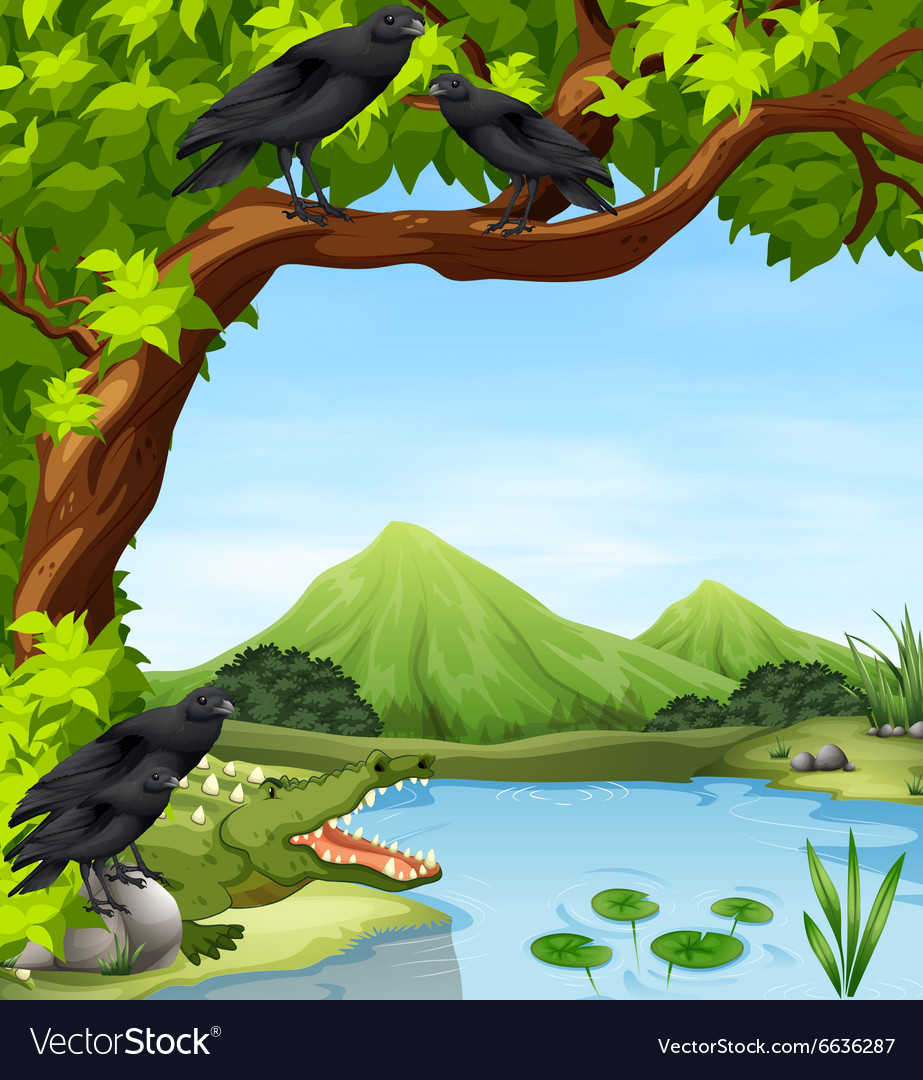 Crows and crocodile by the river vector