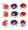 A spider a ladybug and a snail vector image vector image