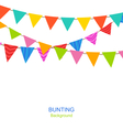 Set Bunting Pennants vector image