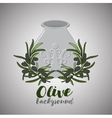 Olive oil in pot and twig of olive vector image