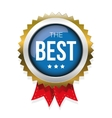 The Best gold badge vector image