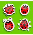 Lady bird icons vector image vector image