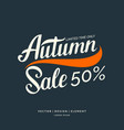 autumn sale lettering on a dark background vector image