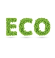 Eco text of green leaves vector image