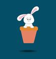 Rabbit Bunny Icon vector image