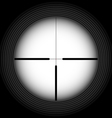 Rifle sight vector image
