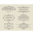 Banners Labels Frames Calligraphic Design vector image vector image