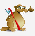 Dental beaver vector image