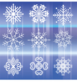 Snowflakes White vector image