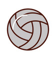 brightly volley ball cartoon vector image