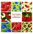 Fruit patterns seamless collection vector image