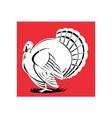 Turkey Retro vector image vector image
