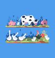 animals on farm vector image