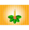 candle with ilex vector image
